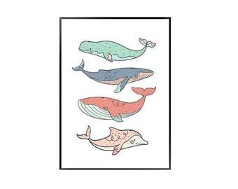 Whale - nursery - childrens bedroom print