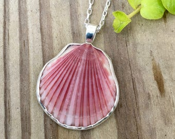 Pink Calico Shell necklace