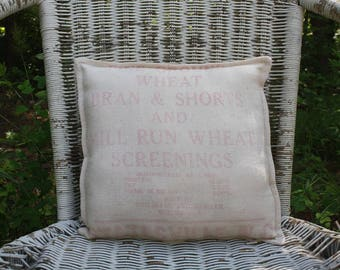 Vintage Feed Sack Pillow - Grain Sack - Statesville NC Flour Mill