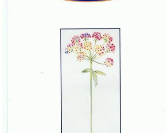 DMC Aida 5.5/cm Ombellifère 30 x 15 cm canvas cross stitch Kit