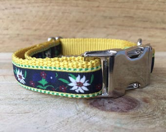 Daisy's Dog Collar