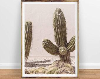 Cactus Digital Print, Cactus Wall Art, Cactus Photo, Cactus Digital, Cactus Photography, Large Cacti Poster, Instant Download Printable Art