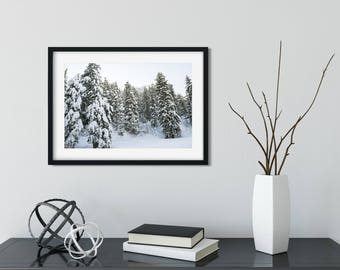 Winter Photography/ Utah Landscapes/ Digital Image/ Instant Download
