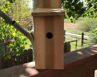 Cedar bird house