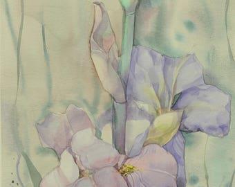 Floral Fine Art Watercolor Painting Flower Art Iris- Original Watercolour Home Decor