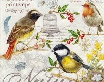 Nature and bird napkin