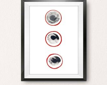 Four Eyes Minus One