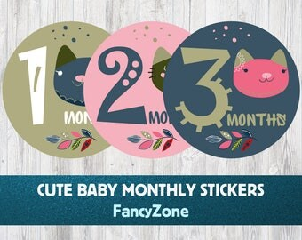 Baby Monthly Stickers - Cats, Milestone Stickers, Baby Shower Gift, Cats Baby Month Stickers, Hello Here I Am, 12 Month Stickers, 1st Year