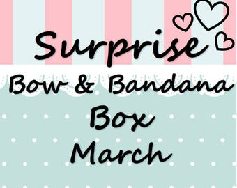 March Monthly Surprise Dog Bandana & Bow Box, dog clothes, dog accessories, pet accessories, detachable bandana, collar accessory