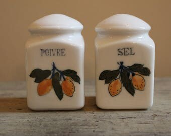 French Ceramic Salt and Pepper Shakers
