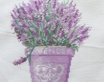 Lavender in pot about to cross
