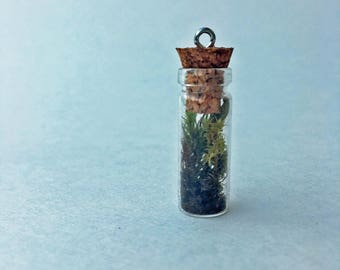 Tiny Terrarium Necklace Lanky, Fuzzy + Juniper Cap Moss 1in Cylinder