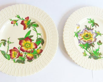 Cauldon England Est 1774 Made in England Set of Botanical Plates Embossed Pattern 2478 & 2481