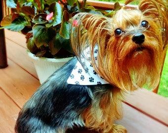 Puppy Paws Bandana Small