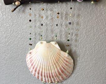 Shell wall hanger