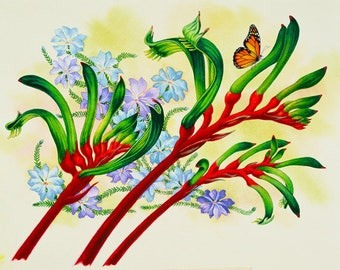 Kangaroo Paw and Leschenaultia Archival Quality Print of Watercolour Painting, Flower Illustration
