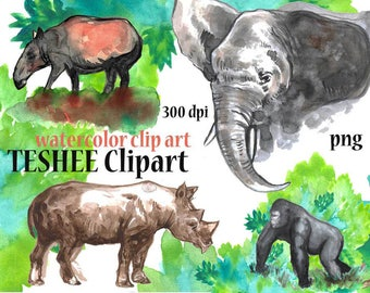 Animals Clipart, Watercolor Animals, Jungle Animals, Instant download, Png files