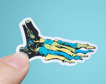 Foot Pop Art | Anatomy Sticker | Matte or Glossy Finish