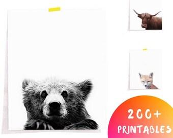 Bear Print, Woodland Nursery Decor, Minimalist Woodland Art, Nursery Animal Prints, Animal Printable Art, Downloadable Animal Print