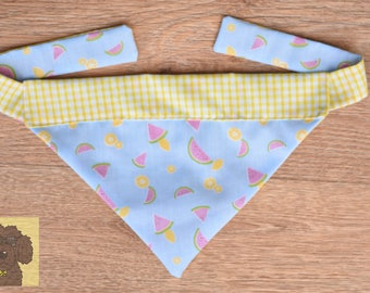 WATERLEMONS - Reversible Dog Bandana