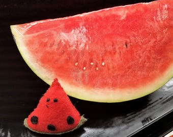 """Felt Watermelon Slice with """"You are one in a melon"""" tag"""