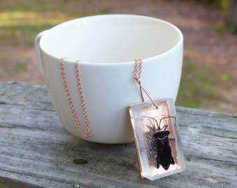 Copper-backed leaf-footed bug necklace, insect jewelry, bug jewelry
