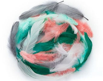 Beautiful feathers, green Mint/peach/gray