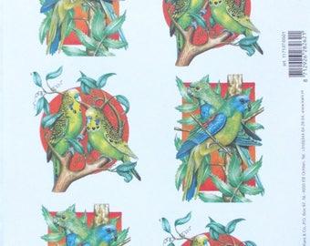SET of 10 sheets - fancy COUPLE birds EXOTIC ref scrapbooking paper. 621