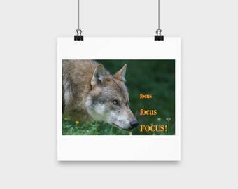 Wolf Poster |focus, focus FOCUS! |  Inspirational Poster
