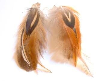 Earrings ethnic feathers