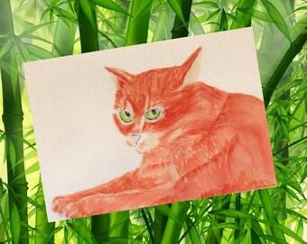 Small portrait of a grey cat in the felts aquarellisables