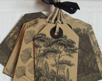 Set of 10 tree (kraft)
