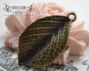 Set of 6 QZW026 leaf charms, Bronze pendant