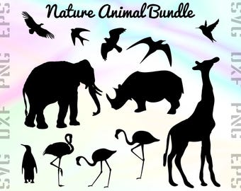 Exotic Animal SVG Files - Animal Dxf Files - Animal Clipart - Animal Cricut Files - Animal Cut Files - Animal Silhouettes - Svg, Dxf, Png