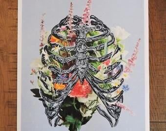Linocut print Anatomy renaissance colors flowers