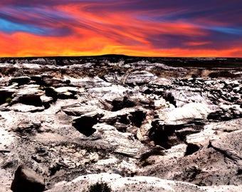 Petrified Forest Sunset Landscape Red Blue Sunset Fine Art Photograph Digital Art