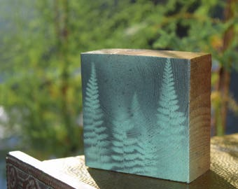 The Pines - art piece (001 Fern Forest Series)