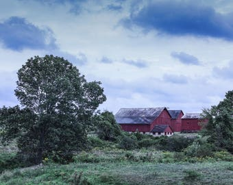 Photograph Suffield CT Tobacco Barns 8x12
