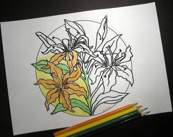Lily  Coloring Page, Adult Coloring Page, Hand-Drawn, Art Therapy, Antistress, Coloring for Relaxation , Instant Digital Download, Flower