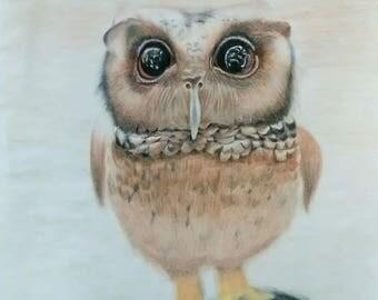 Original drawing,art, colored pencils, owl