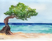 Divi Divi Tree, Aruba watercolor painting original, ocean art, seascape,  Aruba beach art, 5 x 7