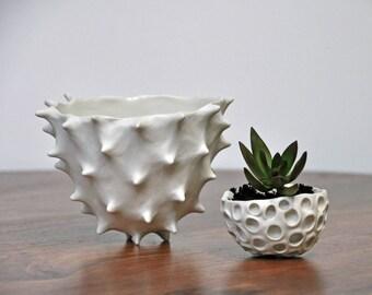 SALE Tall Conch Bowl - White Modern Ceramic Bowl Modern Planter Ceramic Pot