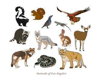 Animals of Los Angeles Art Print 9x12