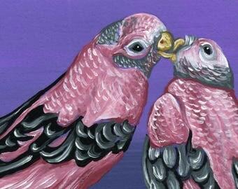 ACEO Rosy Bourkes Parakeet Bird Pet Original Painting Art-Carla Smale