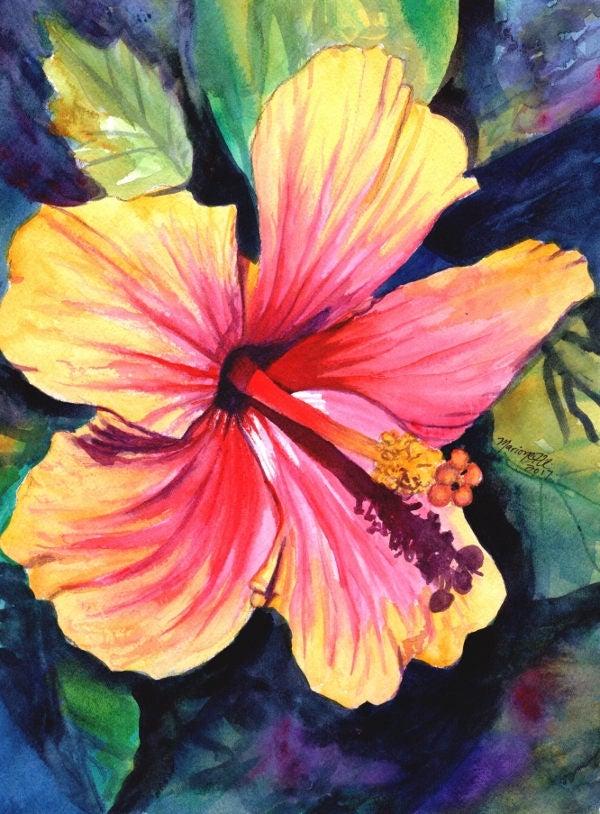 hibiscus original watercolor painting from kauai hawaii ...