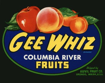 Lot of 10 Gee Whiz Columbia River Fruit Crate Labels Orondo