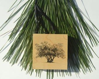 Lover's Oak Drawing Wood Block Christmas Ornament