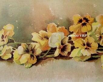 Pansies, Art Print, Half Yard Long, Maud Stumm, Pansy, Shabby Chic, CP12