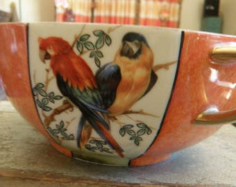 Bowl with Macaws Parrots, RS Germany