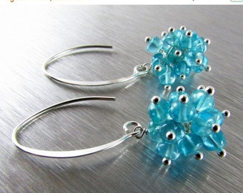 25 OFF Smooth Apatite Rondelles with Sterling Silver Cluster Earrings